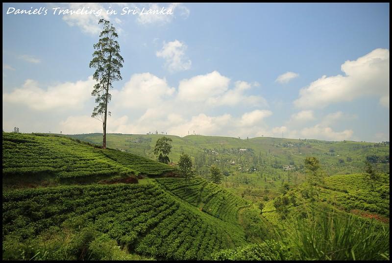 [斯里蘭卡] 上班族也能環遊世界Part 1斯里蘭卡的7天旅行特輯懶人包 探訪絕美茶園、神秘千年石窟以及神聖佛教聖地 7天僅花21000 – 獲選為2019年寂寞星球最佳旅遊勝地 @小盛的流浪旅程