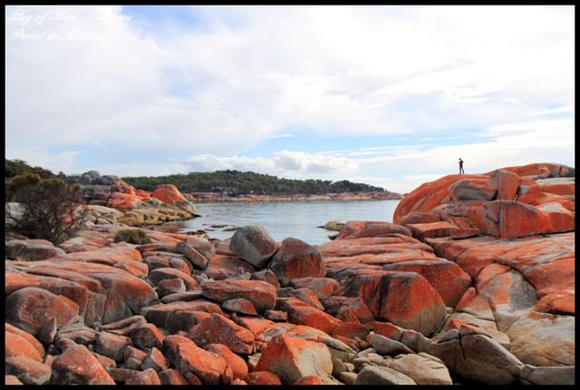 【澳洲塔斯馬尼亞】BAY OF FIRES火焰灣 橘紅外衣披覆下的天然景緻 @小盛的流浪旅程
