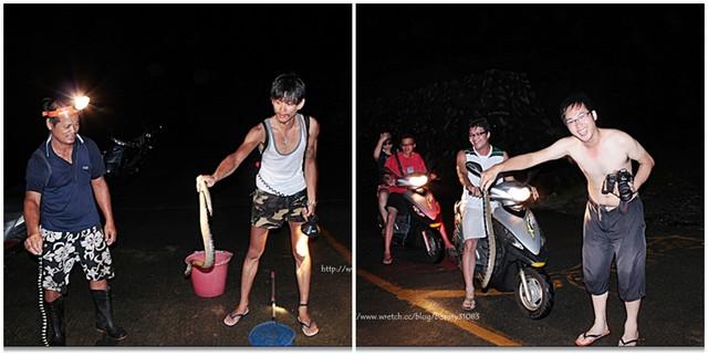 【台東蘭嶼】蘭嶼夜間觀察  觀賞貓頭鷹、抓海蛇初體驗 @小盛的流浪旅程