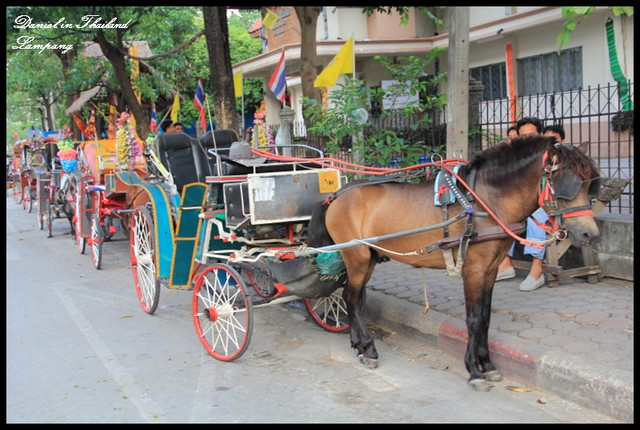 【泰國南邦】南邦傳統馬車風情 & 緬甸風格寺廟Wat Phra Kaew Don Tao @小盛的流浪旅程