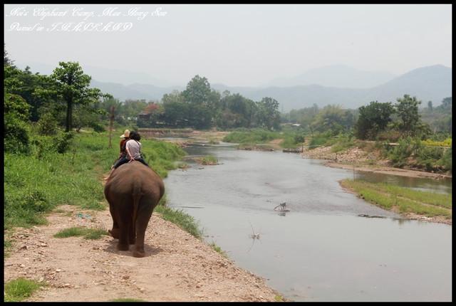 【泰國湄宏順】歷經生死一線間的大象之旅Noi's Elaphant Camp @小盛的流浪旅程