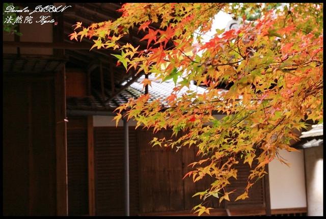【日本京都】禪意與楓紅結合之美景 法然院&哲學之道 @小盛的流浪旅程