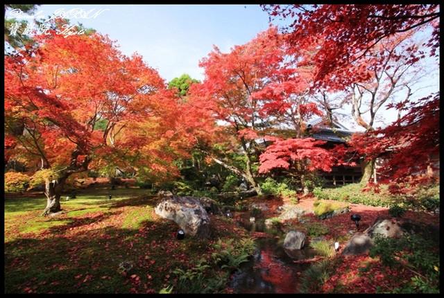 【日本京都】嵐山地區寧靜的賞楓名所 寶嚴院(宝厳院) @小盛的流浪旅程