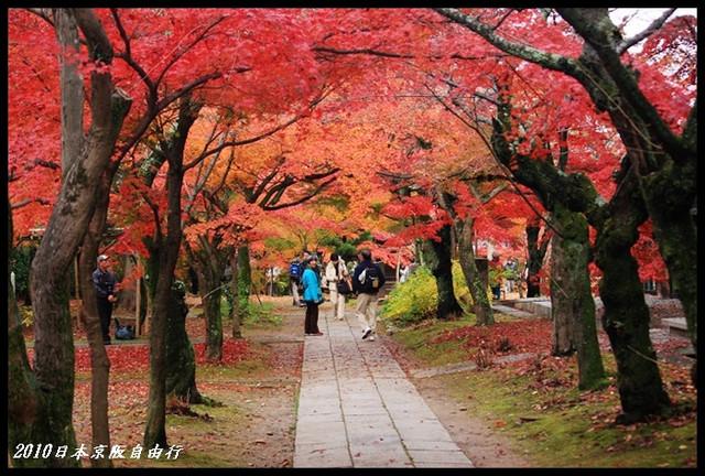 【日本】日本秋季何處去?來個京都古城賞楓之旅吧(上) @小盛的流浪旅程
